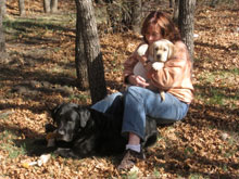 Chanterelle as a pup with her mom Trey, in the woods, ready to hunt mushrooms.