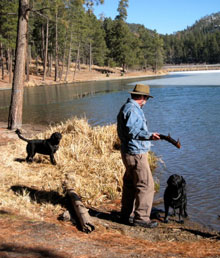three black labs by a beautiful lake in the forest, with their friend getting ready to throw a 'stick' into the water for play time.  The stick, however, is full-grown lab size, and would qualify as a log in some parts