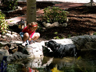 Cole wading in a beautiful pond, working to convince a small child to come swimming